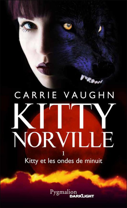 Kitty and the midnight hour kitty et les ondes de minuit vampires sorci res - Le sel et les ondes negatives ...